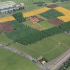 Landschaftsbau (meine Lernphase) Bild 1