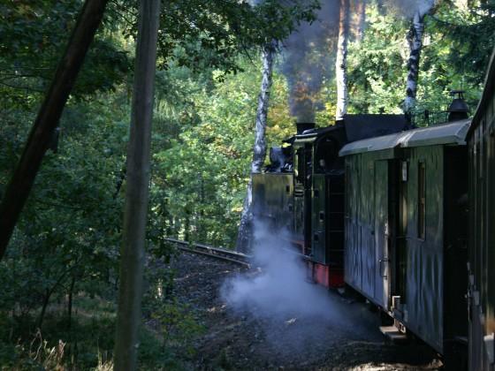 Zittauer Schmalspurbahn 2015_13