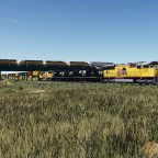 UP SD70M and NS SD40E in the steppe