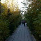 High-Line-Park in NYC