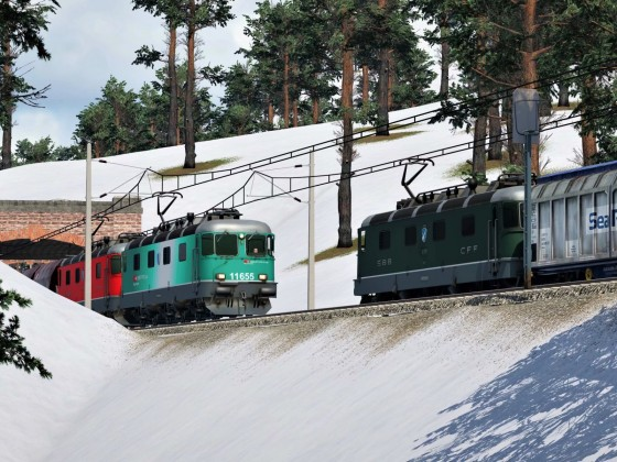 Re 6/6 with freight trains in winter