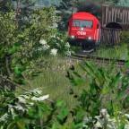 2016 mit Nahverkehrsgüterzug