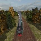 Mit der Dampfbahn durch ein Wäldchen
