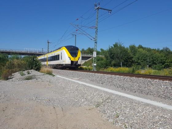 S1 in Breisach am Rhein