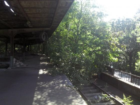 Bahnsteig  Siemensstadt