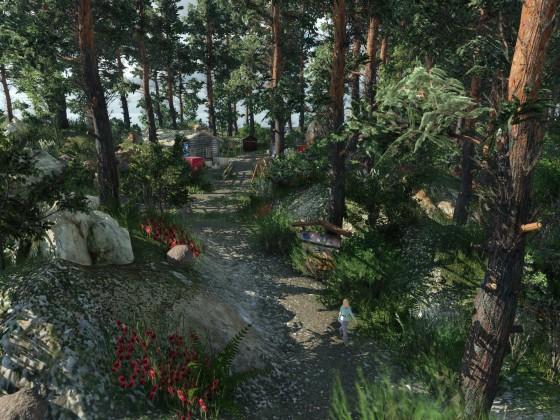 Das Camp im Wald