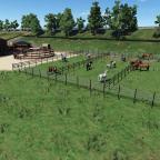 Weide vom Ponyhof