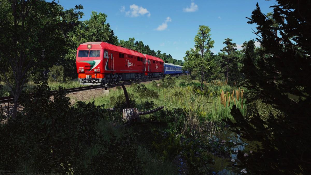 TEP70BS near the swamp