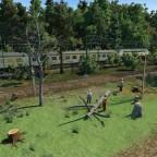 Forstwirtschaft