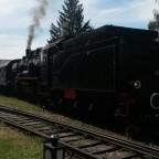 Dampftage im Bahnpark Augsburg mit Ammersee Dampfbahn