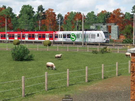 S-Bahn BR 423 40 Jahre S-Bahn München