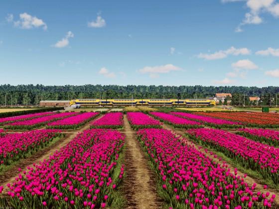 NS VIRMm near the tulip farm