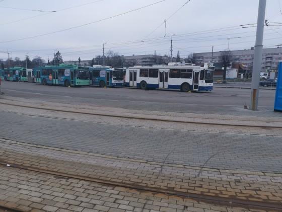 Busse Kaliningrad