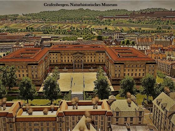 Naturhistorisches Museum Grafenbergen - Postkarten Stil