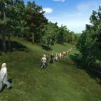 Lust auf einen Wald-Spaziergang???