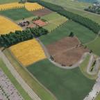Landschaftsbau (meine Lernphase) Bild 2