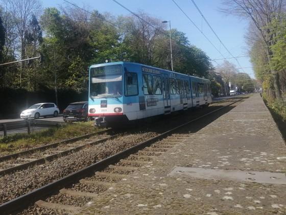 2331 auf der Linie 17 kurz vor der EBO.